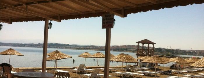 Duba Plajı is one of Yapalim.