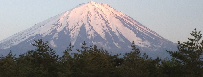 Mt. Fuji is one of Sightseeing spots and historic sites.