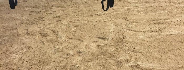 Sandbox Fitness is one of LA next.