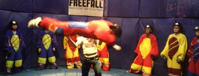 Niagara Freefall and Interactive Center is one of Adventures.