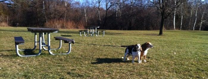Morningside Park is one of Posti che sono piaciuti a Ethan.