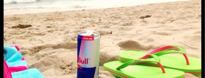 Windansea Beach is one of Locais curtidos por Asma.