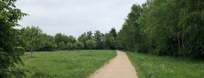 Mauerradweg is one of With 🐳.
