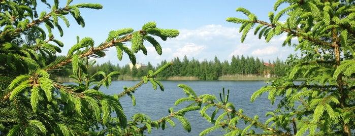 Квадрат is one of Sveta : понравившиеся места.
