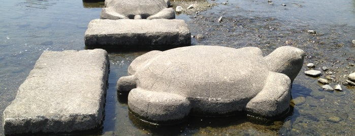 Turtle Stones is one of nikkinihon.