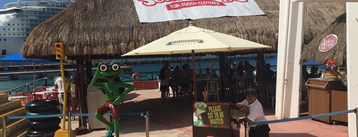 Half Señor Frog´s is one of Lugares favoritos de Winnie.