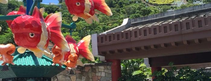 Gold Fish Treasures is one of Lugares favoritos de Winnie.