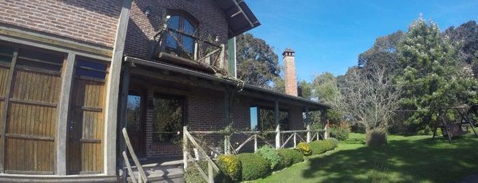 Bodega Stagnari is one of Uruguay.