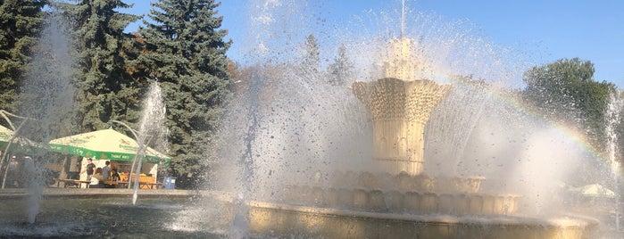 Фонтан в центральному міському парку Вінниці is one of สถานที่ที่ Illia ถูกใจ.