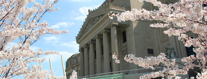 Brooklyn Museum is one of Best Museums in the US.