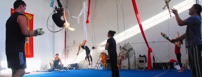 South Florida Circus Art School is one of Best Workouts in the US.