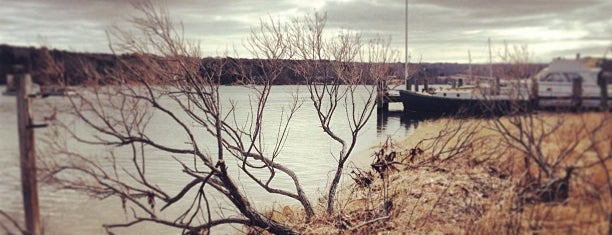 Lake Tashmoo is one of MV.