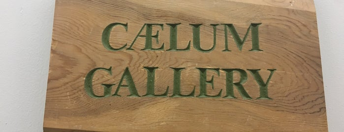 Caelum Gallery is one of NYC Midtown.