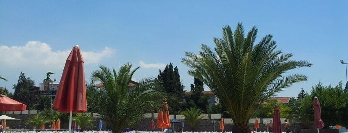 Tuzla Özel Eğitim Merkezi Komutanlığı is one of Locais salvos de TC Özlem.