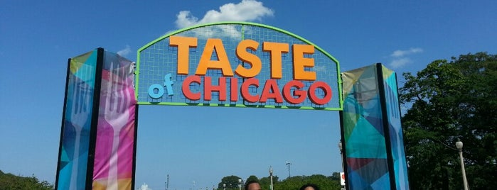 Taste of Chicago is one of Sites You May Want To see In Chicago.