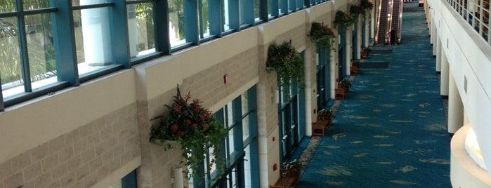 Broward County Convention Center is one of Tempat yang Disukai Patty.
