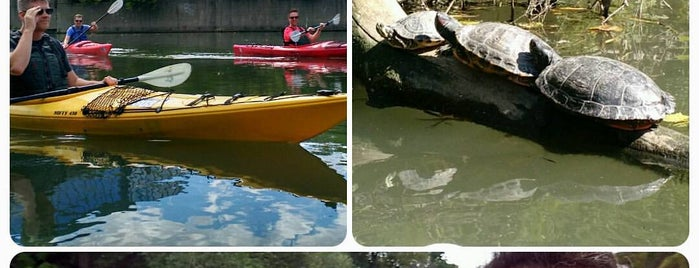 Chicago River Canoe & Kayak Chicago Launch is one of สถานที่ที่ Andy ถูกใจ.