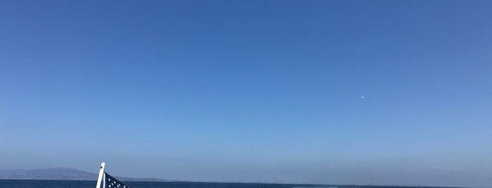 Pacific Ocean is one of Global Workallholics Unified.
