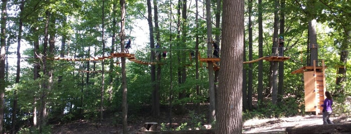Treetop Trekking is one of Toronto.