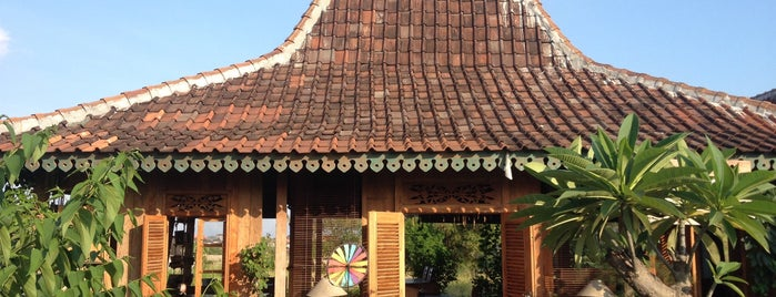 The Warung of Dandelion is one of путешествия.