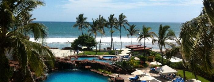 Hotel el Cid Resorts is one of Roberta 님이 좋아한 장소.
