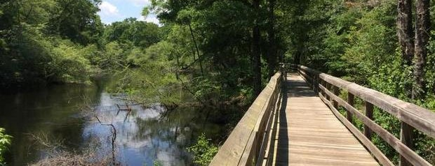 Fair Bluff River Walk is one of NC's Best-Kept Secrets.