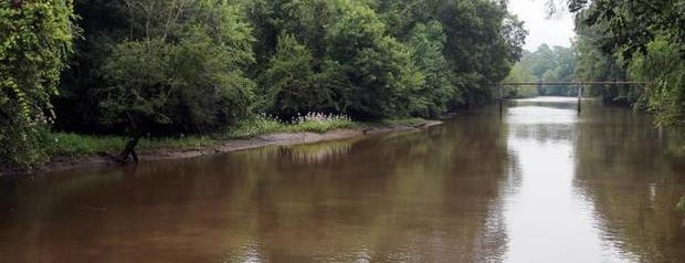 Contentnea Creek is one of NC's Best-Kept Secrets.