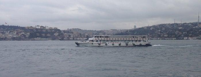 The Market Bosphorus is one of Orte, die ezresra gefallen.