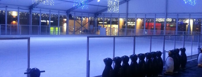 Dundrum Ice Skating is one of Working places list.