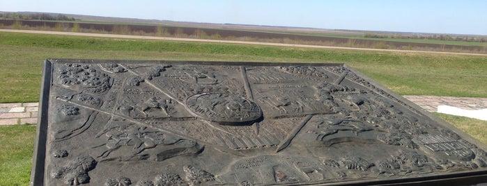 Куликово поле is one of Russia10.