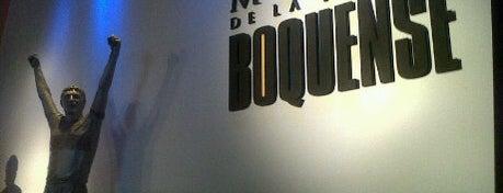 Museo de la Pasión Boquense is one of Lugares Interesantes.
