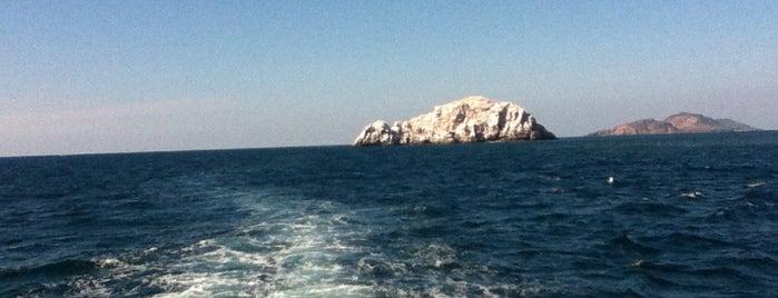 Embarcadero Isla De La Piedra is one of Uriel : понравившиеся места.