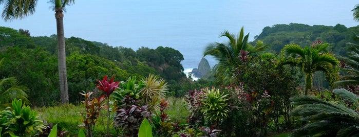Road To Hana is one of Hawaii Trip - Maui Island.