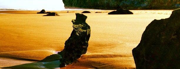 Playa de Berria is one of De turismo por Cantabria.