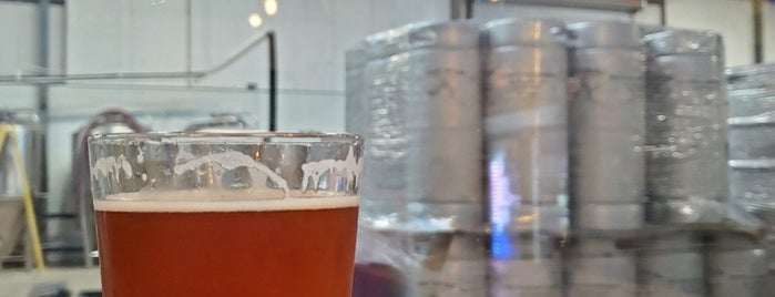 Dead Lizard Brewing Company is one of Breweries or Bust 3.