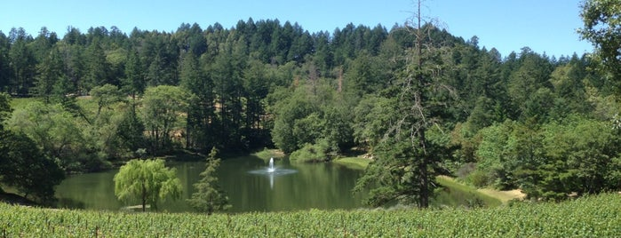 Sherwin Family Vineyards is one of Napa Valley.
