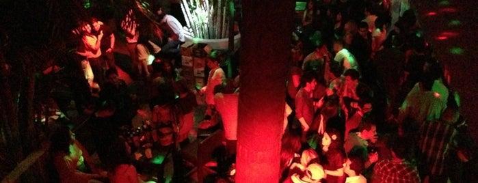 Jungle Bar is one of Locais curtidos por Alejandro.