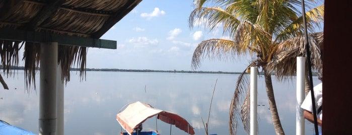 Laguna de Mandinga is one of Vane 님이 좋아한 장소.