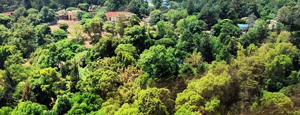 Bosque de Chapultepec is one of CDMX e Oaxaca.