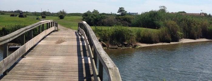Lido Golf Club is one of Orte, die Naked gefallen.