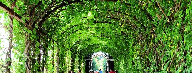 Jardins de Schönbrunn is one of Vienna.