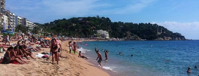 Platja de Lloret de Mar is one of Чудеса мира... Фотографии со всего света!!!.
