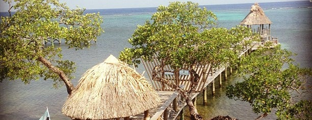 Tranquilseas Eco Lodge and Dive Center is one of West End Roatan.