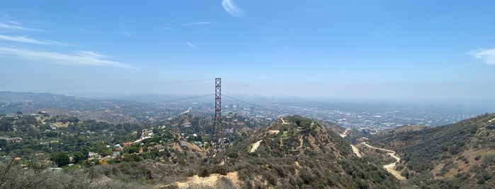 Peak of Runyon Canyon is one of California Dreaming.
