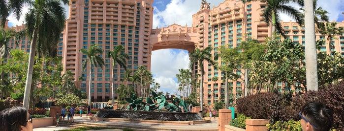Atlantis Royal Towers is one of Tempat yang Disukai D.