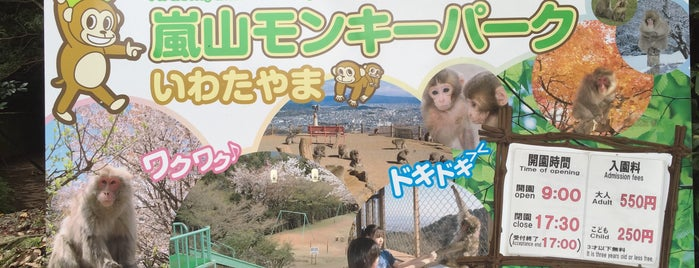 Arashiyama Monkey Park Iwatayama is one of Locais curtidos por D.