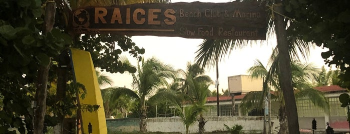 Raices is one of Holbox Recs.
