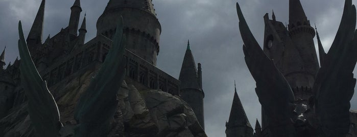 The Wizarding World of Harry Potter is one of Tempat yang Disukai Andy.