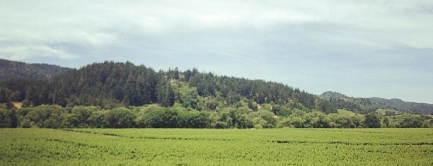 Wilson Winery is one of Sonoma County.