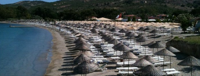 Hanedan Resort & Beach Club is one of Posti che sono piaciuti a Özlem.